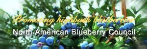 Welcome to the North American Blueberry Council
